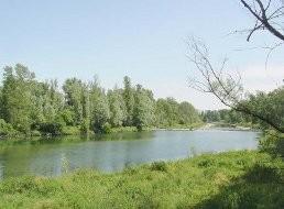 Pianura_Bresciana_Parco_Regionale_Oglio_Nord.JPG
